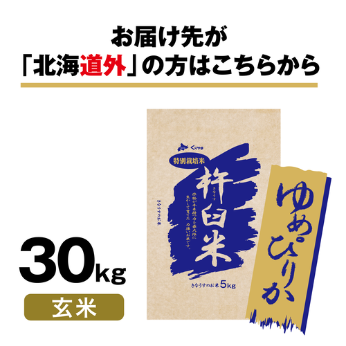 特別栽培米 北海道きなうすファーム ゆめぴりか 30kg(玄米)