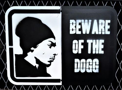 Beware of dogg
