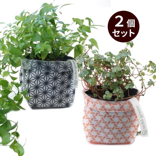 【キャンペーン特価】uchi-green 麻の葉&籠目(gr-0405) ideaco(イデアコ)デザイン