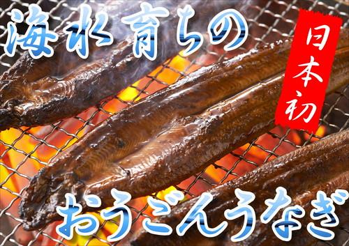 長崎県産おうごんうなぎセット(松)