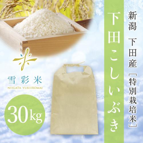 【雪彩米】下田産 特別栽培米 令和2年産 下田こしいぶき 30kg