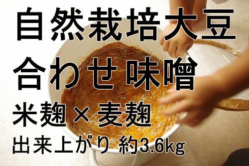 手作り味噌キット 自然栽培大豆の合わせ味噌(米麦)(出来上がり量3.6kg)