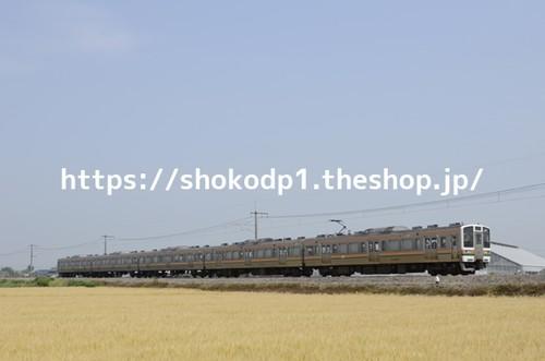211系と田園風景_DSC3173
