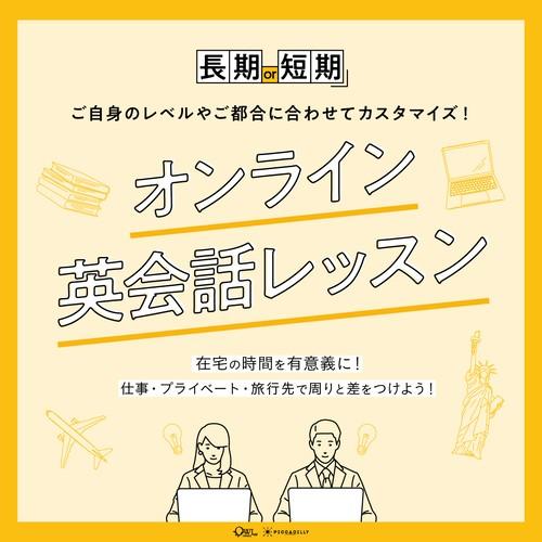 個別レッスン / 14日間短期集中コース