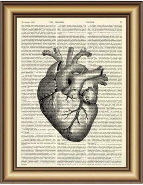 解剖学アート 心臓 クラシック A4サイズ