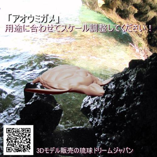 「アオウミガメ」3Dプリント用データ
