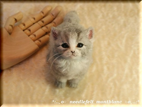 羊毛フェルト 猫 ふさふさな子猫