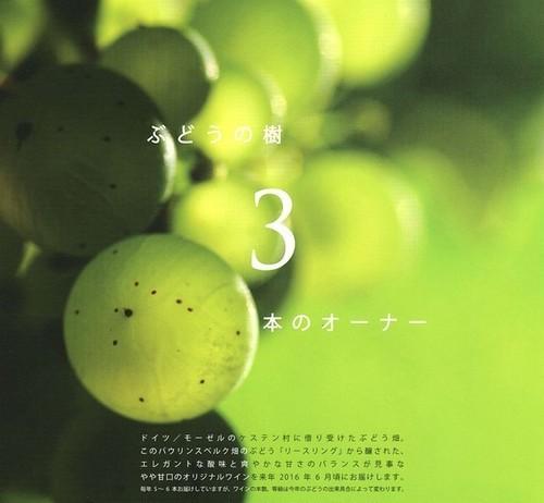 【予約のみ】葡萄の樹3本のオーナー