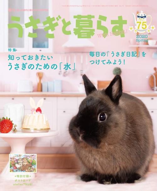 うさぎと暮らす No.75