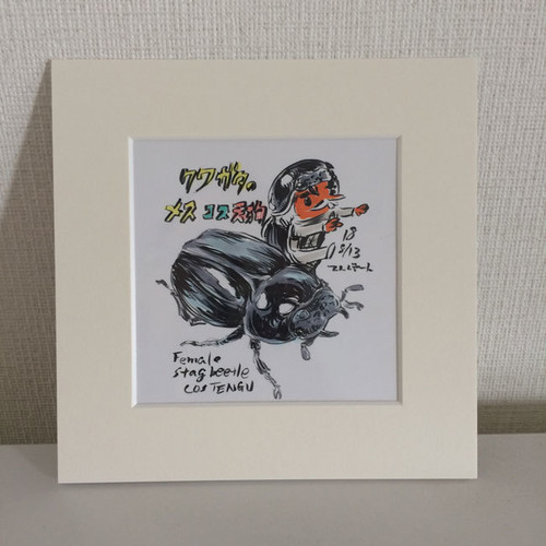 手書きイラスト原画「クワガタのメス天狗」
