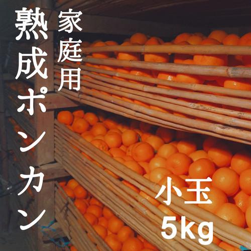 送料無料 熟成ポンカン家庭用5kg 小玉サイズ 熊本県産