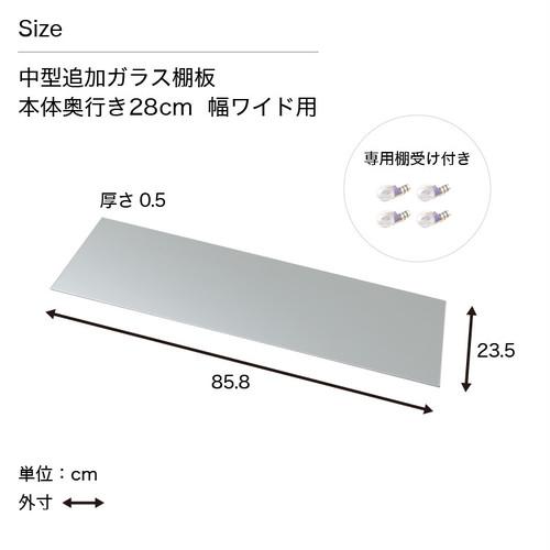 地球家具 コレクションラック DIO ディオ 対応 追加ガラス棚板 単品 ( ガラス棚板のみ) ( ワイド 奥行28cm用 中型 )
