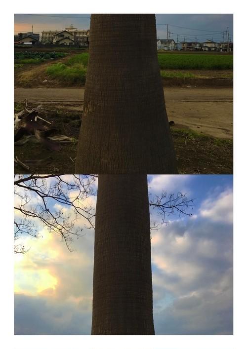 柳川たみ『高木』1