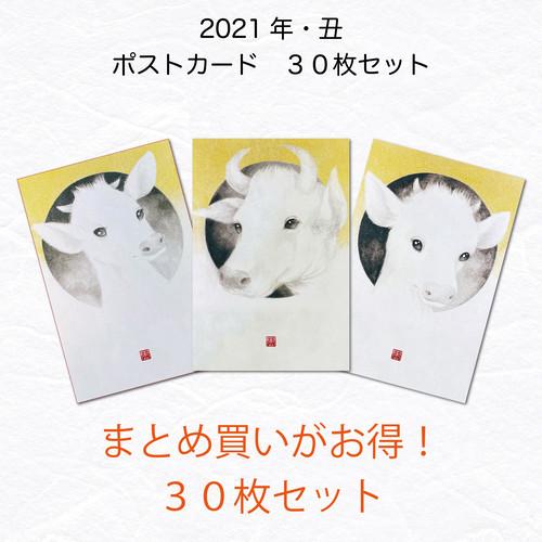 【お得な30枚まとめ買いセット】2021年 ポストカード・年賀状 丑