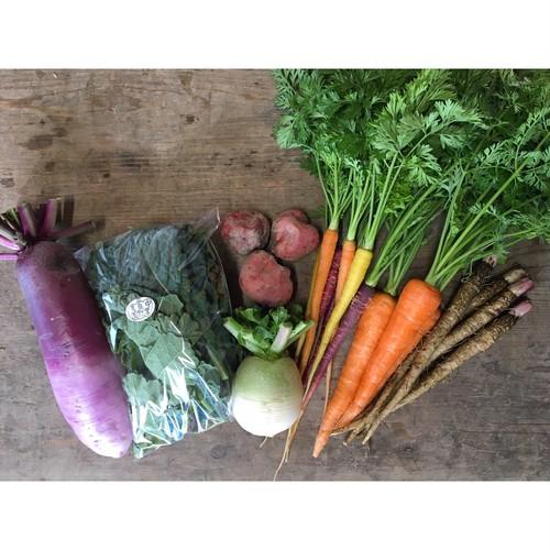 季節のお野菜便 ーSサイズー / Seasonal Vegetable Mix ーSmall sizeー