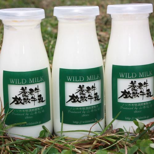 養老牛放牧牛乳  小瓶×6本