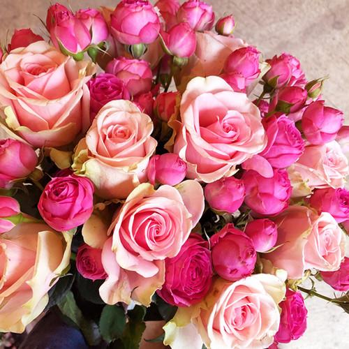 【Bouquet】Pink Rose Bouquet(Premium)