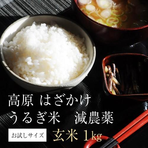 うるぎ米(玄米)1kg・<減農薬>特別栽培米 2018年収穫