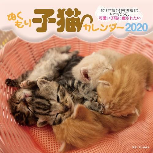 ぬくもり子猫カレンダー2020