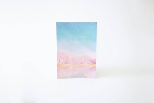 桜と青空を描いた、レターセット