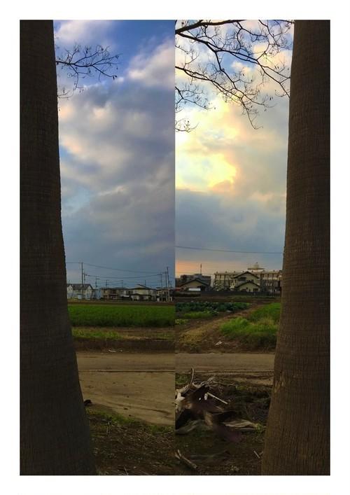 柳川たみ『高木』2