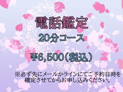 電話鑑定(20分コース)