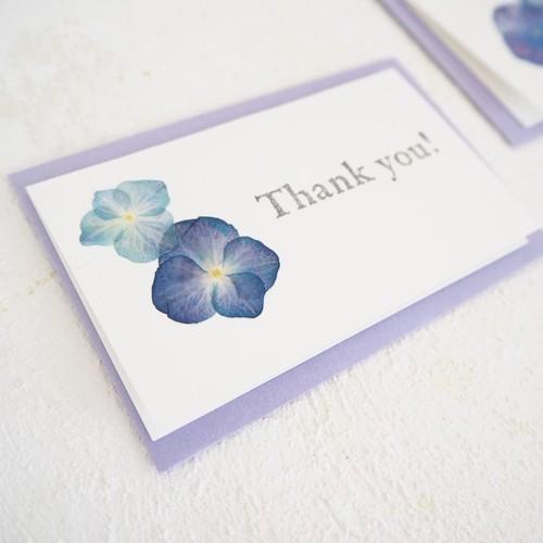 【3枚セット】紫陽花の押し花カード