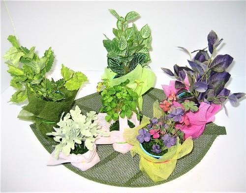 花いずものルーム・ガーデン⑤ (アーティフィシャルフラワー:アート苗)