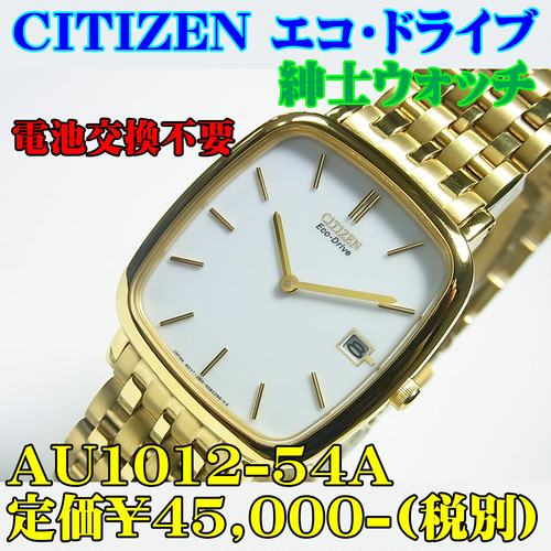 CITIZEN MEN'S Eco-Drive AU1012-54A 定価¥45,000-(税別)