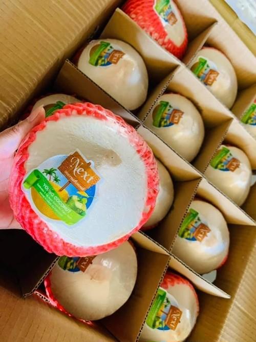 Diamond Coconut (12pcs)