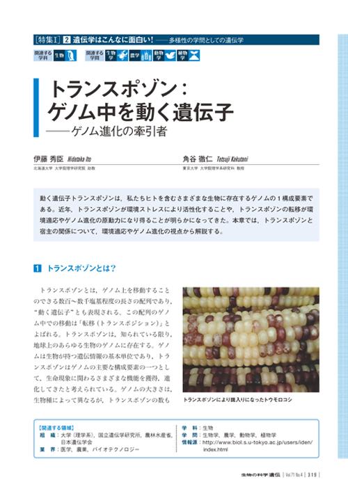 2017年7月発行号/特集I/角谷 徹二 氏