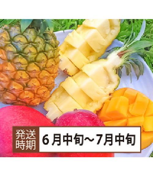 【コロナ緊急支援】沖縄県西表島産 パイン&マンゴーセット (パ700gマ400g)