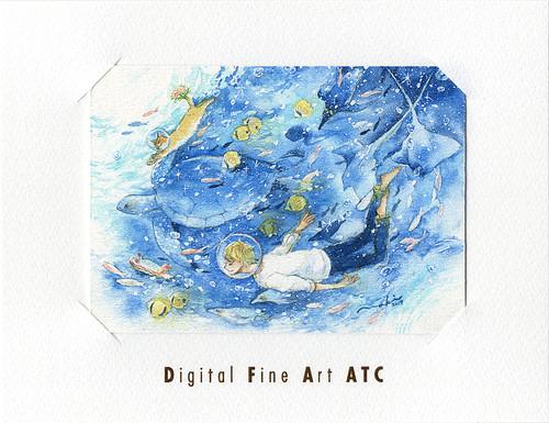 DFA ATC | 那木 ⑬