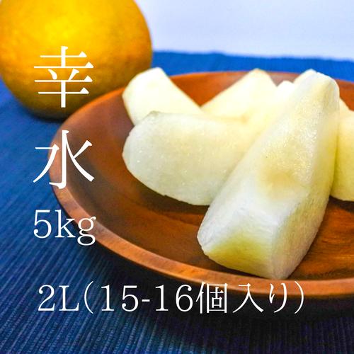 梨好きの方にぴったり!【中玉】幸水15-16個入り(5kg)