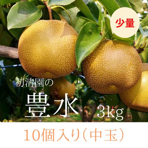 うれしい少量サイズ!【中玉】豊水10個入り(3kg)