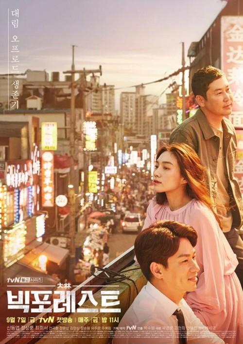 韓国ドラマ【ビッグ・フォレスト】Blu-ray版 全10話