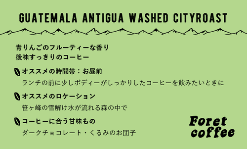 【豆300g】 スペシャルティコーヒー Guatemala Antigua washed city Roast