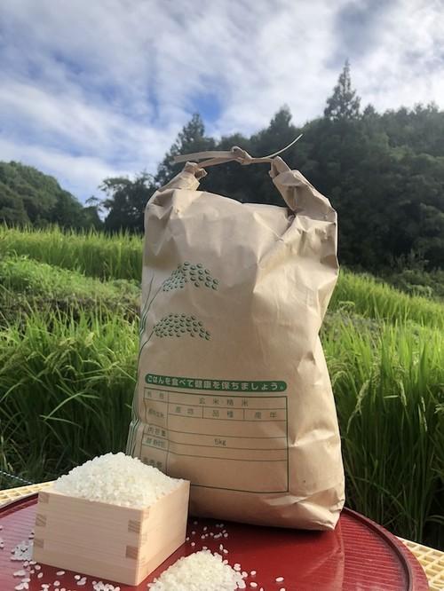 【白米10kg】愛媛 自家農園減農薬栽培あきたこまち令和元年産新米!