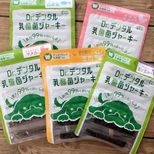 Dr.デンタル 乳酸菌ジャーキー 発売記念 アソートセット 5種