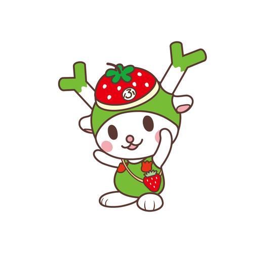 フィルター・ストッパー付き ふっかちゃんマスク / No.147【イチゴ】