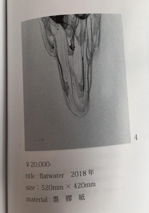 田中逸齋「flatwater」カタログ4