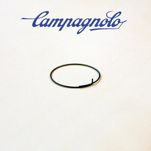 Campagnolo FH-RE114 Pawl spring (1pcs)