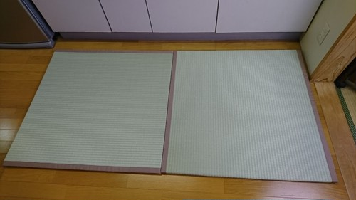置き畳(天然い草) 2枚組