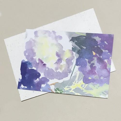 Hydrangea Post card:紫陽花のメッセージカード