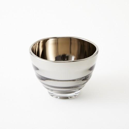 Visitor-Silver
