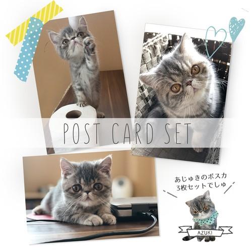 ポストカード3枚セット(あずきちゃん)