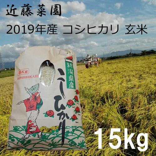 2020年 新潟県産 令和2年産 コシヒカリ 玄米 15kg 近藤菜園