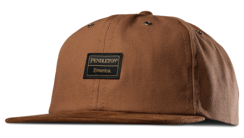 EMERICA X PENDLETON 6 PANEL