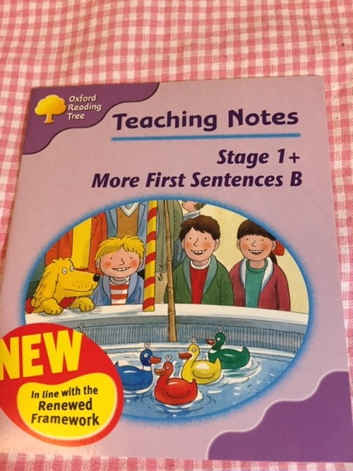 ORT Teaching Notes set(Stage1+ More First Sentences B)