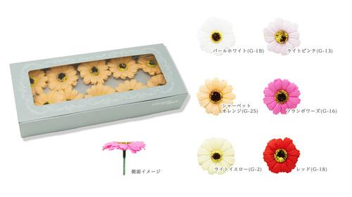 ガーベラ 10輪BOX(色:6種類)